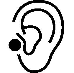 Piercingart Tragus