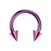 Circular Barbell violett mit zwei Cones