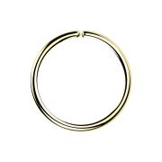 Micro Piercing Ring 18k vergoldet