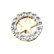 Dermal Anchor 14k vergoldet Sternkreis silber