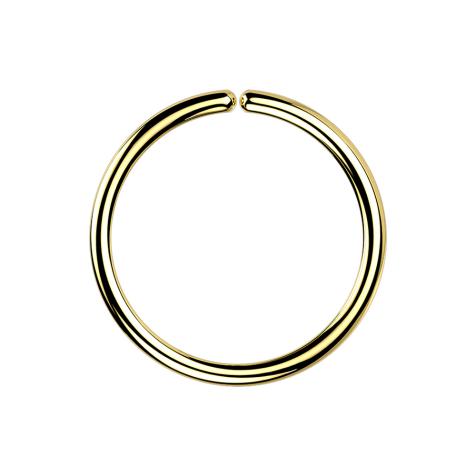 Micro Piercing Ring vergoldet